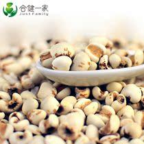 有机薏仁米 薏苡仁薏米 薏米仁 有机杂粮 优质薏米 农家食品 价格:14.80