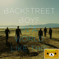 Backstreet Boys In A World Like This 单曲 日版 CD 价格:95.00