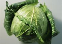 新鲜有机绿色蔬菜 圆白菜 卷心菜 洋白菜 疙瘩白 包心菜 菜头 价格:6.00