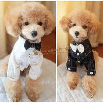 宠物西装 狗西装 英伦绅士宠物衬衫 打底衫 配领结 狗衣服 狗服饰 价格:35.00