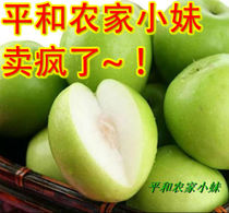 新鲜水果 无公害台湾大青枣/牛奶蜜枣/脆枣/比冬枣好吃~已结束 价格:7.00