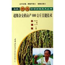 """超级杂交稻亩产800公斤关键技术(彩插版)""""农民增 价格:5.98"""