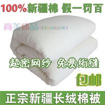 定做纯棉花被子婴儿童棉被儿童秋冬被芯棉絮棉胎褥子幼儿园床垫被 价格:38.00