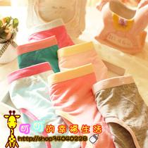 10件包邮竹炭竹纤维女式纯色内裤 底腰棉裆纯棉全棉女士三角裤 价格:4.50
