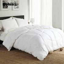 多喜爱家纺 皇爵暖阳被/冬被 加厚超保暖被芯/被子/棉被 舒适贴身 价格:299.25