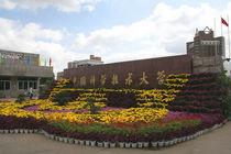 中国科学技术大学有机光化学考研真题笔记讲义等套餐 价格:175.00