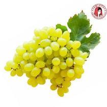 新疆无核白葡萄 新鲜水果香甜多汁葡萄提子 空运直航您机场自提 价格:1248.00