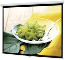 100寸机制白塑幕布  100寸电动幕布 爱丽特机制白塑幕布 山东总代 价格:350.00
