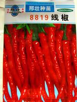【线椒种子】干鲜两用 做红干椒 鲜椒 家庭菜园蔬菜 热销辣椒特价 价格:1.00