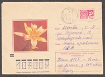 """苏联美术邮资封 1972年 F8593 """"奥伦治.莱特""""百合花 实寄 价格:25.00"""