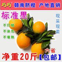 预售 20斤包邮 巧巧正宗赣南脐橙 黄橙信丰脐橙子 新鲜水果桔子 价格:65.00