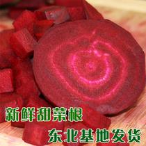 东北基地发货 新鲜蔬菜 甜菜根 红菜头 紫菜头 减肥排毒 健康养生 价格:3.00