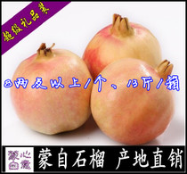 蒙自正宗甜石榴 云南特产直销 薄皮软籽 特级8两10斤新鲜有机水果 价格:120.00