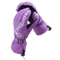 苔原地带手套 冬季防水骑行滑雪户外登山保暖雪花男女情侣款手套 价格:29.00
