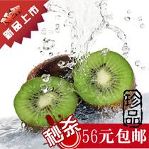 中秋团购促销 新鲜水果 周至猕猴桃  弥猴桃 散装包邮奇异果 价格:56.00