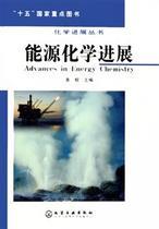 能源化学进展(精)/化学进展丛书书 袁权 价格:45.90