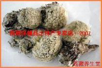 西藏雪莲花(月经不调、风湿)8元50克  两斤包邮 价格:8.00