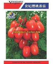 家庭菜园佳品 贵妃樱桃番茄种子 袋装  水果型小番茄   约100粒 价格:7.80