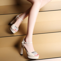 正品女鞋2014春夏季新款时尚鱼嘴高跟凉鞋粗跟水钻防水台真皮单鞋 价格:178.00