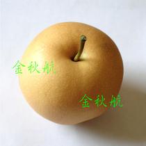 新鲜水果 韩国丰水梨 富硒梨 果梨 水晶梨 降火去热 春季养生必备 价格:3.90