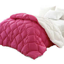 绮蕴家纺 高档秋冬仿羽绒被子 双人加厚被芯 暖柔纤丝冬被 价格:197.98