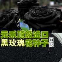 元禾黑玫瑰籽面膜--保加利亚进口优质--美容院专用380G 价格:28.00