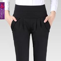 哈伦裤女2013新款韩版潮休闲铅笔小脚裤秋装显瘦英伦大码黑色长裤 价格:53.00