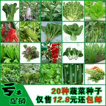 种子包邮套餐A 新手阳台种子套餐20种四季蔬菜种子包邮仅12.8元 价格:12.80