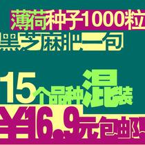 15种薄荷种子包邮套餐 可食用泡茶盆栽薄荷种子套装籽满1000粒+! 价格:16.90
