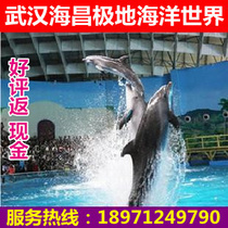武汉海昌极地海洋世界门票 海洋公园门票 电子票无需预约好评返现 价格:98.00