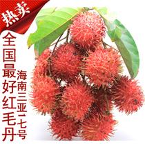 海南水果果园直供 红毛丹新鲜水果 三亚7号红毛丹【 过季节了!】 价格:168.00