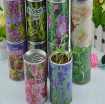 易拉罐花卉桌面植物绿植创意微型迷你植物盆栽盆景向日葵玫瑰24款 价格:2.40