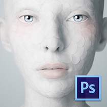Adobe Photoshop CS6 CS5 for Mac Ps软件 中文完整版 教程+素材 价格:5.00