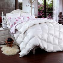 柏丝羽 新款静音加厚保暖鹅绒羽绒被95%朵朵绒冬被子 正品特价 价格:1830.00