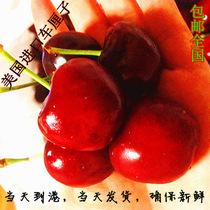 现货 新鲜水果 美国加州车厘子 进口大樱桃 江浙沪2斤包邮全国4斤 价格:65.00