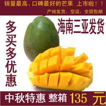 海南三亚 芒果 新鲜/水果 芒果 青皮芒 绿皮澳芒 KT澳芒 价格:135.00