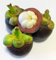 优思诚鲜果-泰国山竹6斤装 去火王进口水果 水果皇后 新鲜水果 价格:98.00