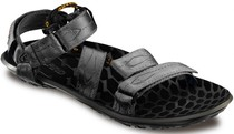 美国代购 Lizard Hull H2O Sandal Men