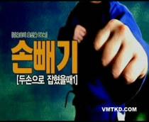 韩式合气道自卫防身术(Kang Seung Mo/韩语/8VCD) 价格:40.00