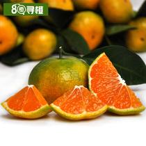 80寻橙 地标水果节 赣南新鲜水果 现摘寻乌蜜桔 产地桔子 10斤重 价格:53.00