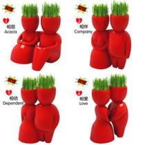 牧羊座魔羯座天蝎座处女座草娃娃生态E园创意迷你植物 种子 园艺 价格:7.00