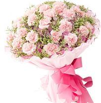 母亲节 妇女节鲜花|30朵粉康乃馨|武汉速递@【浪漫满屋喜铺】 价格:108.00