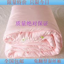 外贸桑蚕丝被子清仓特价冬被加厚5斤6斤7斤8斤9斤被芯包邮 价格:259.00
