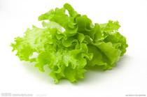 四季播生菜种子 蔬菜种子 生食水果蔬菜 阳台种菜 2元1袋约1千粒 价格:2.00