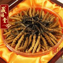 藏禧堂 拉萨产地直销 西藏那曲冬虫夏草 特级精选虫草 3根1克包邮 价格:220.00