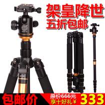 轻装时代Q666单反相机摄影三脚架便携独脚旅游数码三角架云台配件 价格:333.00