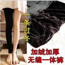加绒加厚 珍珠绒无缝一体裤 考拉绒保暖打底裤 外穿踩脚裤 包邮 价格:26.55