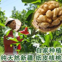 2013新货 新疆阿克苏纸皮核桃500G 非薄皮核桃 果园直发3斤包邮 价格:35.60