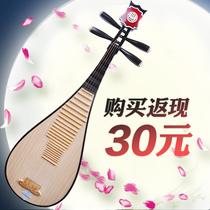 琵琶 星海民族乐器 色木背板/桐木面板琵琶 学生儿童琵琶8901R 价格:338.00