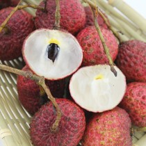 新鲜水果 2013年新鲜到货 上海8斤包邮 海南四月红荔枝 价格:9.80